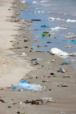 ban on plastic bans