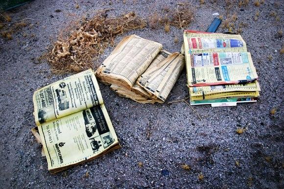 Old_Phonebooks_litter